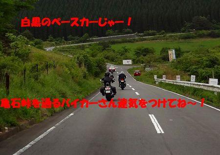 DSC00659.jpg