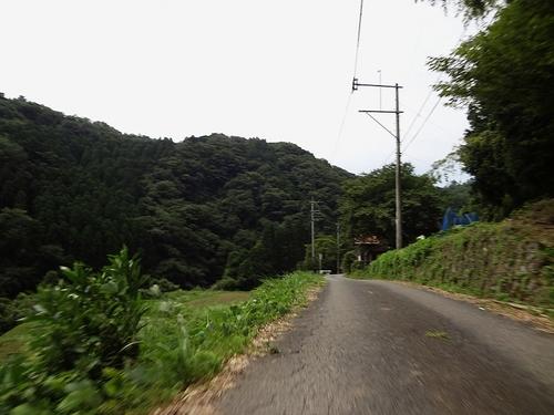 DSC04095.jpg