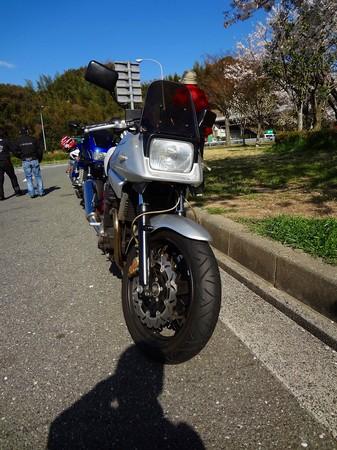 DSC00220.jpg